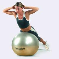Мяч для фитнеса (фитбол) 65см TechnoGym (MS 0982)