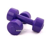 Гантели для фитнеса Титан 1.5 кг