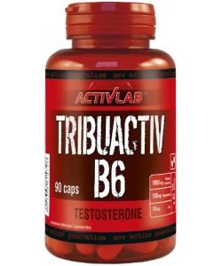 Трибулус с витамином В6 капсулы 90шт Activlab (06288-01), , 06288-01, Activlab, Повышение тестостерона