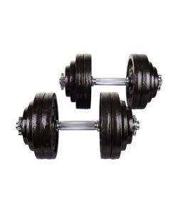Гантели металлические Hop-Sport STRONG 2x30 кг
