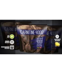 Пищевая добавка карнитин 4000 порошок 500г Power Pro (06247-01), 19250, 06247-01, Power Pro, L-карнитин