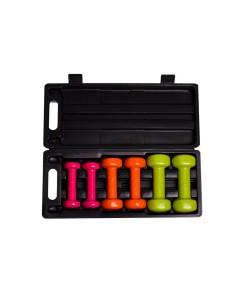 Набор гантелей в кейсе 6кг PowerPlay 4103, , 4103, PowerPlay, Гантели для фитнеса