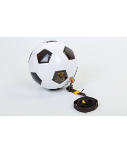 Мяч футбольный тренировочный Zel FB-5501, , FB-5501, Zelart, Футбольные мячи