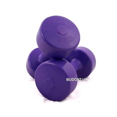 Гантели для фитнеса OSPORT Титан 4 кг (FI-0094-4)