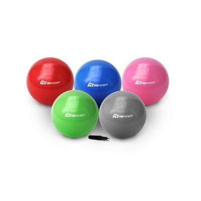 Мяч для фитнеса (фитбол) 55см с насосом Hop-Sport GYM BALL 55
