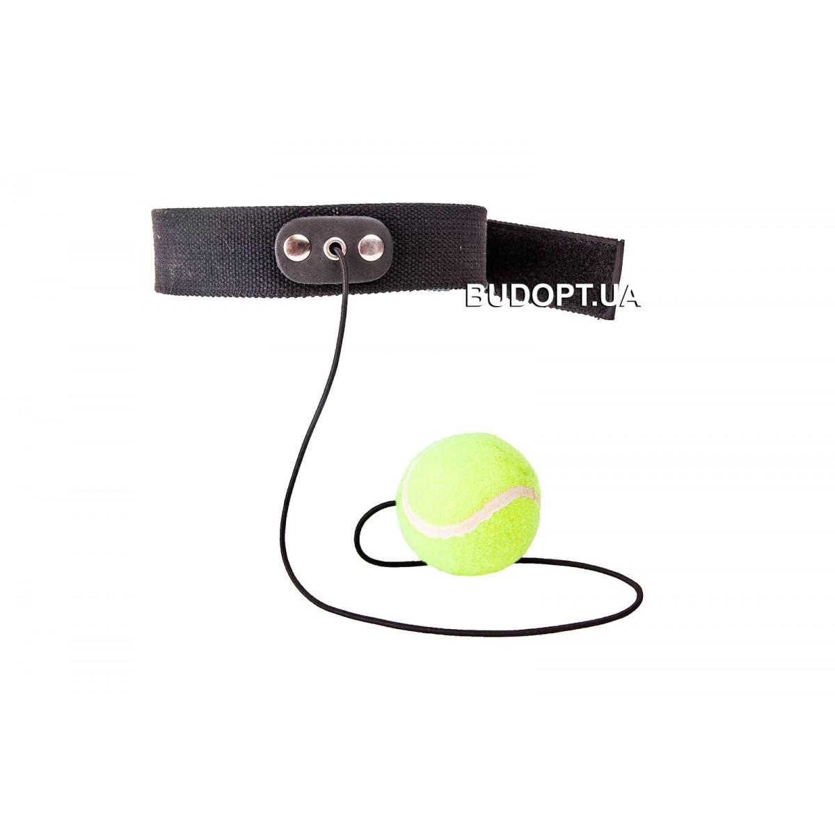 Теннисный мяч в боксе мяч на резинке видео 91
