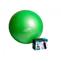 Мяч гимнастический PowerPlay 4001 65см + насос